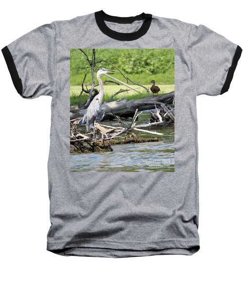 Baseball T-Shirt featuring the photograph Heron And Mallard by Debbie Hart
