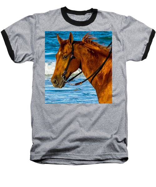 Horse Portrait  Baseball T-Shirt