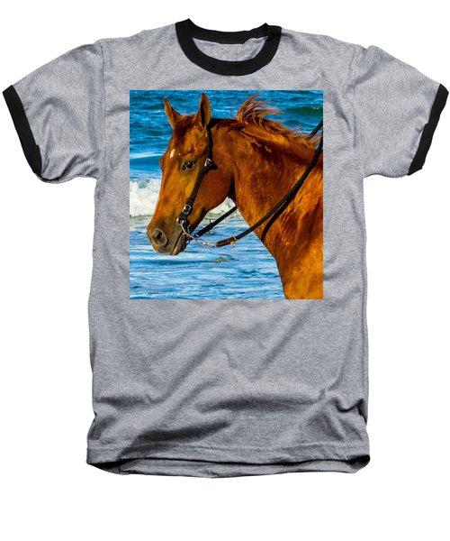 Horse Portrait  Baseball T-Shirt by Shannon Harrington