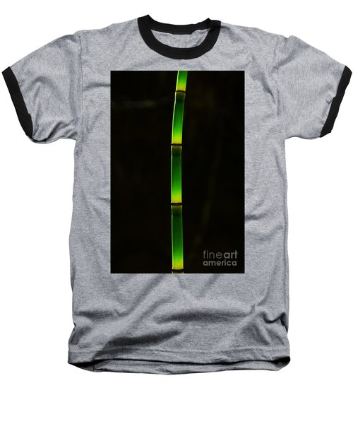 Horsetail  Baseball T-Shirt