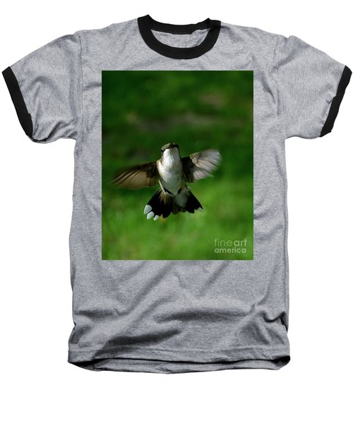 Hovering Hummingbird  Baseball T-Shirt