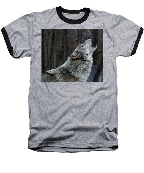 Howling Tundra Wolf Baseball T-Shirt by Richard Bryce and Family