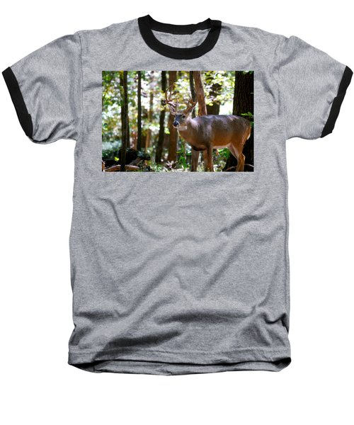 Baseball T-Shirt featuring the photograph Hunters Dream 10 Point Buck by Peggy Franz
