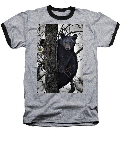 Hunting Berries Baseball T-Shirt by Ronald Lutz