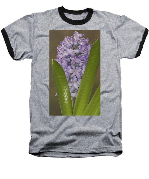 Hyacinth In Full Bloom Baseball T-Shirt
