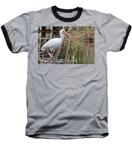 Ibis 1 Baseball T-Shirt by Joe Faherty