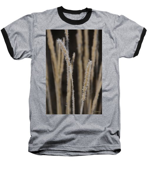 Ice Crystals On Tall Grass Baseball T-Shirt by Mick Anderson