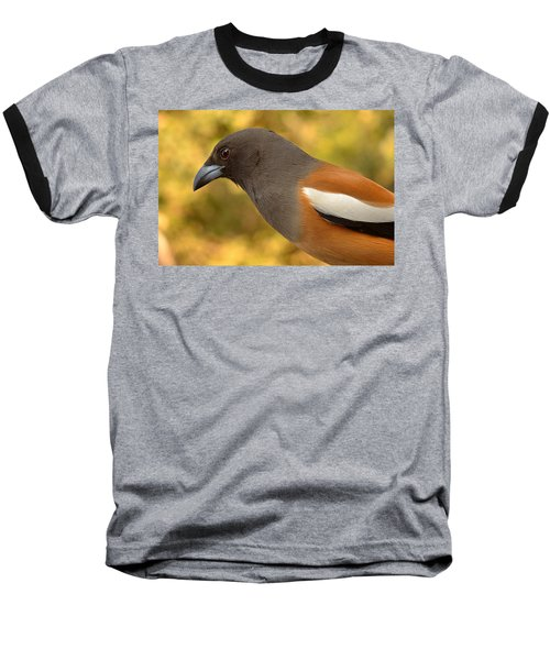 Indian Treepie. A Portrait. Baseball T-Shirt