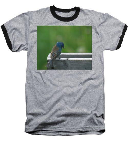 Indigo Bunting And Friend Baseball T-Shirt