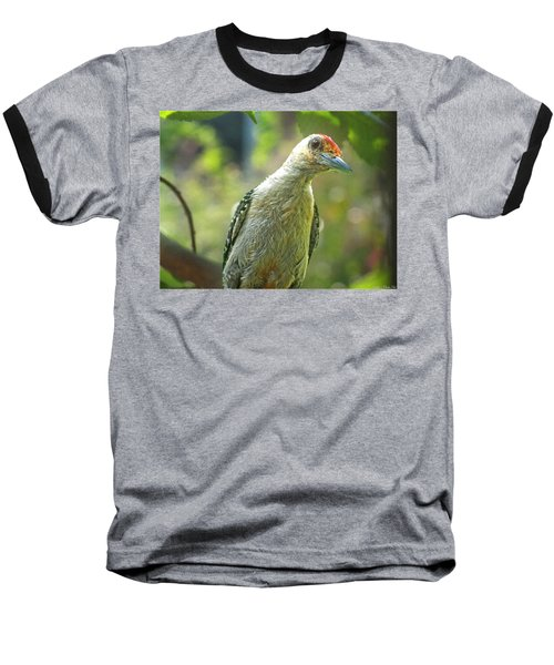 Baseball T-Shirt featuring the photograph Inquisitive Woodpecker by Debbie Portwood