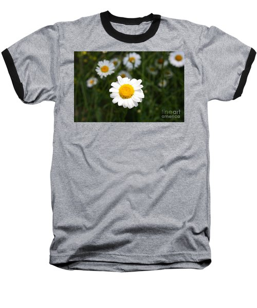 Baseball T-Shirt featuring the photograph Isn't That A Daisy by Tony Cooper
