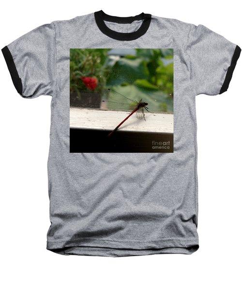It's Always Greener Baseball T-Shirt by Lainie Wrightson