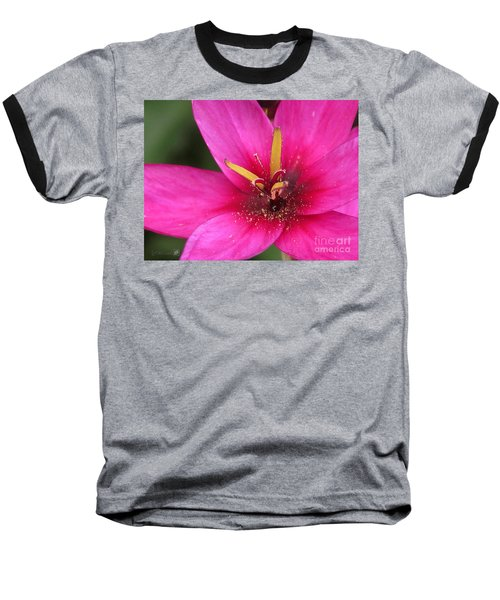 Ixia Named Venus Baseball T-Shirt by J McCombie