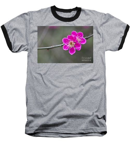 Baseball T-Shirt featuring the photograph Japanese Flowering Apricot. by Clare Bambers