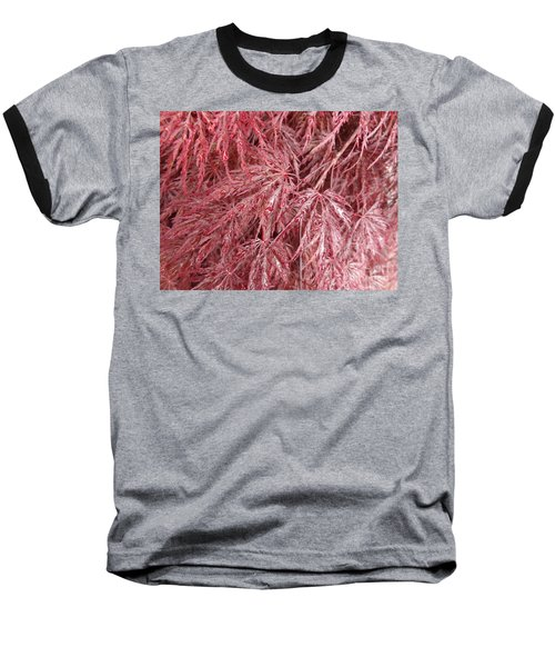 Baseball T-Shirt featuring the photograph Japanese Maple by Laurel Best