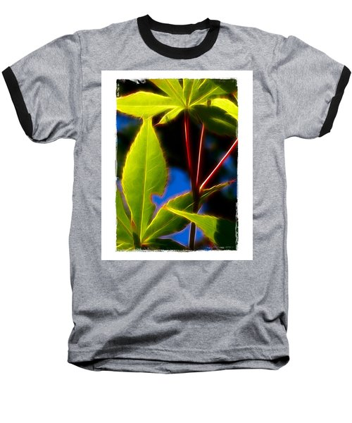 Baseball T-Shirt featuring the photograph Japanese Maple Leaves by Judi Bagwell
