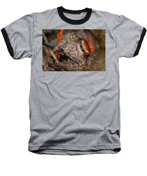 Jumping Spider Portrait Baseball T-Shirt