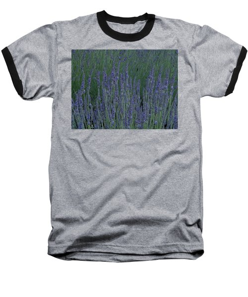 Baseball T-Shirt featuring the photograph Just Lavender by Manuela Constantin