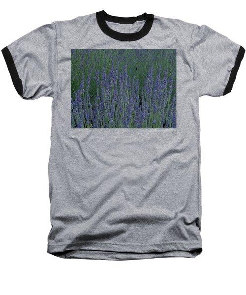 Just Lavender Baseball T-Shirt by Manuela Constantin