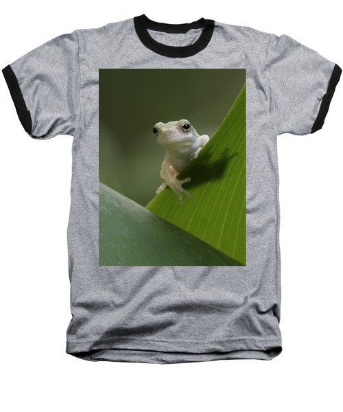 Baseball T-Shirt featuring the photograph Juvenile Grey Treefrog by Daniel Reed