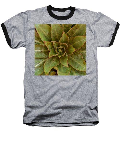 Leaf Star Baseball T-Shirt