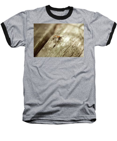 Baseball T-Shirt featuring the photograph Little Jumper In Sepia by JD Grimes