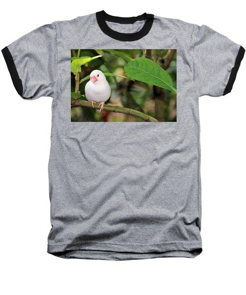 Baseball T-Shirt featuring the photograph Little White Bird by Rosalie Scanlon