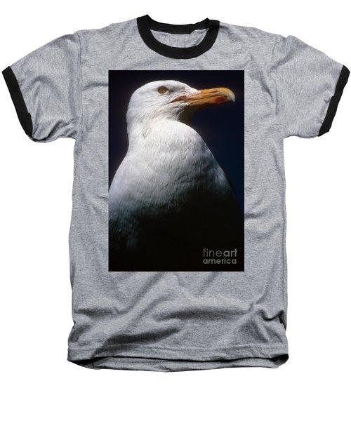 Long Island Seagull Baseball T-Shirt