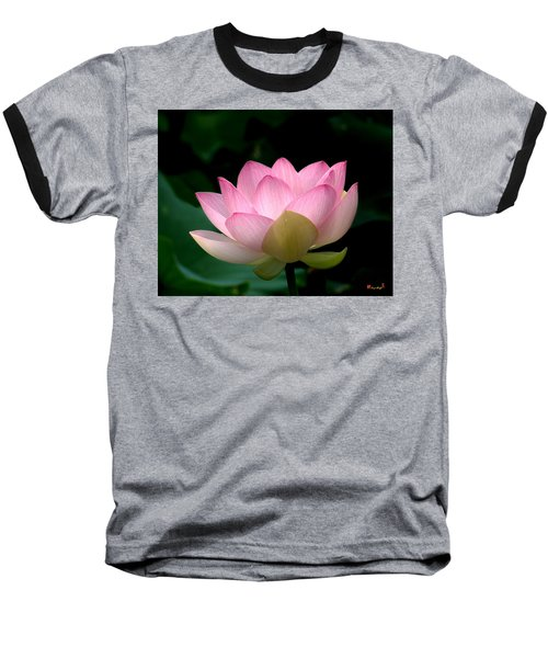 Lotus Beauty--blushing Dl003 Baseball T-Shirt