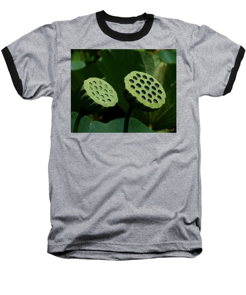 Lotus Capsules-sun Worshipers Dl052 Baseball T-Shirt