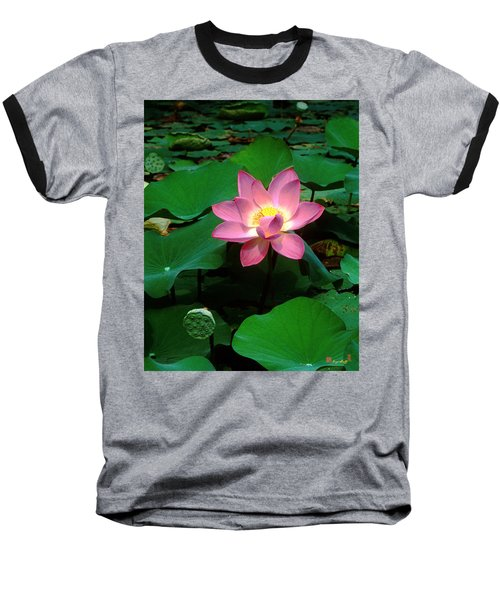 Lotus Flower And Capsule 24a Baseball T-Shirt