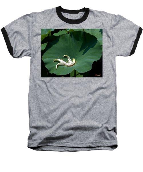 Lotus Leaf--castoff IIi Dl060 Baseball T-Shirt