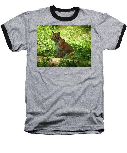 Lynx Baseball T-Shirt by Jouko Lehto