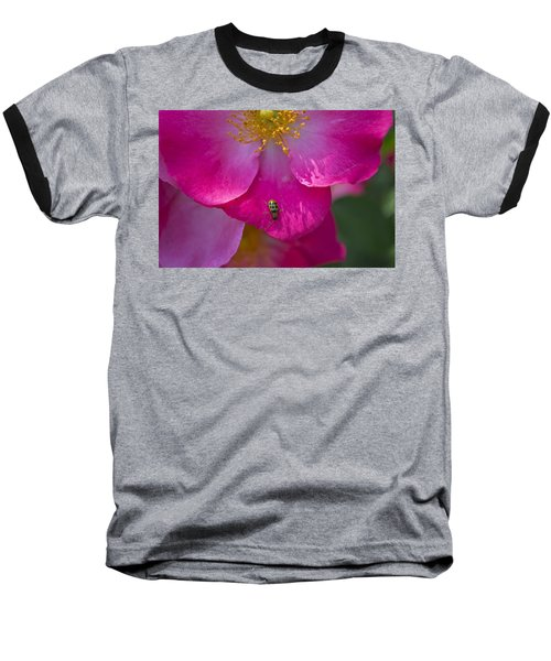 Magenta Baseball T-Shirt