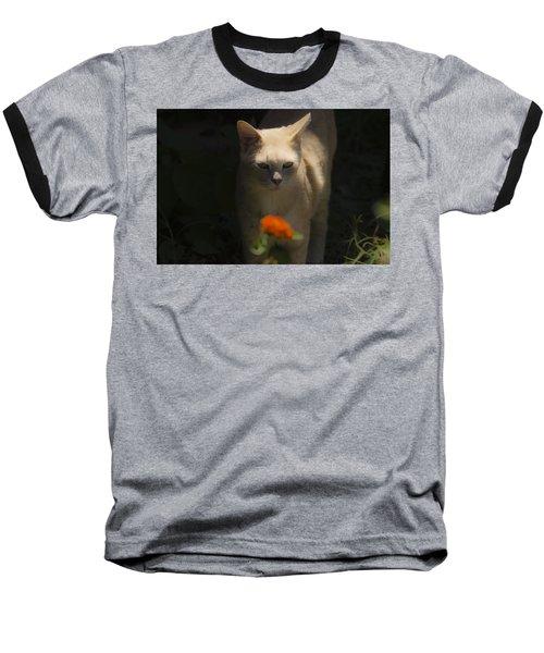 Many Moods Of Kitty Baseball T-Shirt