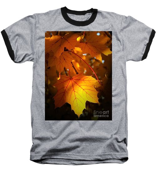 Maple At First Light Baseball T-Shirt