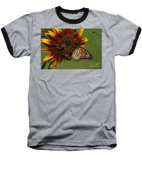 Monarch And The Bee Baseball T-Shirt