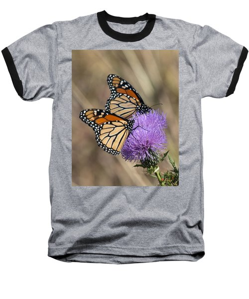 Baseball T-Shirt featuring the photograph Monarch Butterflies On Field Thistle Din162 by Gerry Gantt