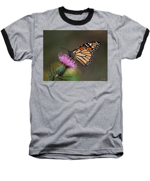 Baseball T-Shirt featuring the photograph Monarch Butterfly On Thistle 13a by Gerry Gantt