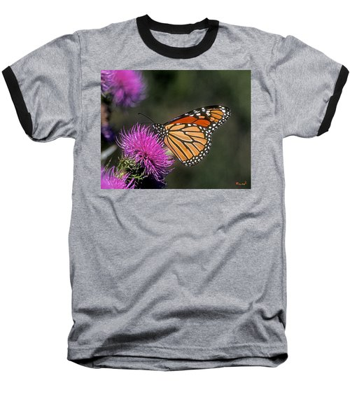 Baseball T-Shirt featuring the photograph Monarch On Thistle 13f by Gerry Gantt