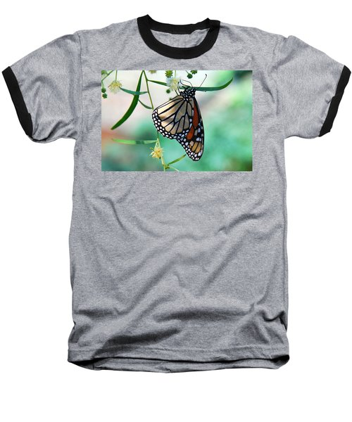 Baseball T-Shirt featuring the photograph Monarch by Tam Ryan