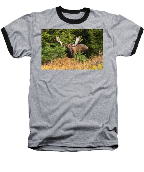 Baseball T-Shirt featuring the photograph Monster In The Hemlocks by Doug Lloyd