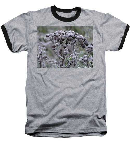 Baseball T-Shirt featuring the photograph Morning Frost by Tiffany Erdman