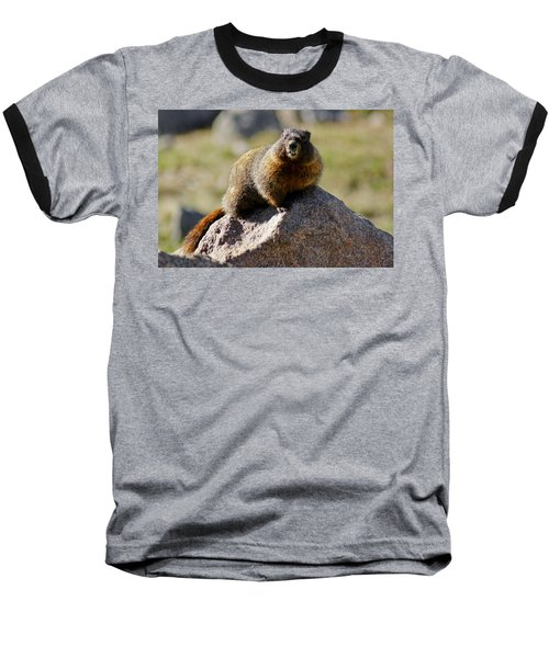 Morning Marmot Baseball T-Shirt