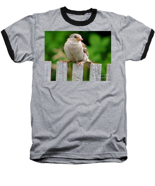 Baseball T-Shirt featuring the photograph Morning Visitor by Rory Sagner
