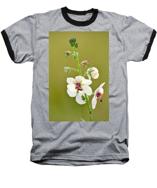 Baseball T-Shirt featuring the photograph Moth Mullein by JD Grimes