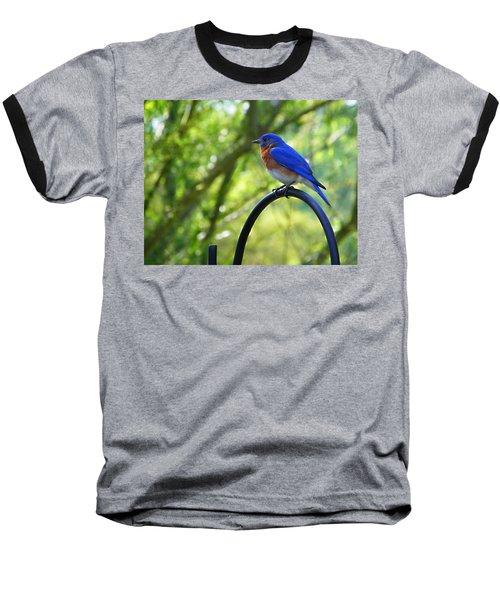 Mr Bluebird Baseball T-Shirt