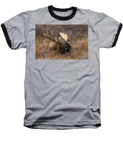 Baseball T-Shirt featuring the photograph Much Needed Rest by Doug Lloyd