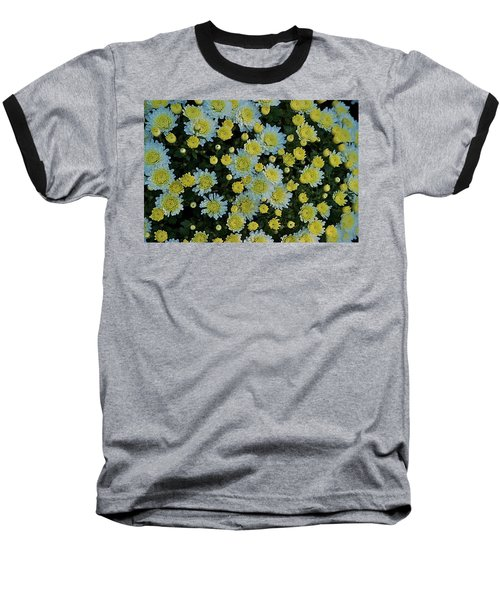 Baseball T-Shirt featuring the photograph Mums by Joseph Yarbrough
