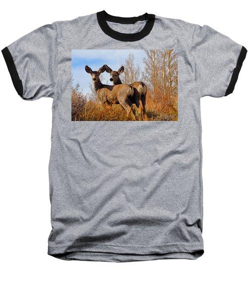Nature's Gentle Beauties Baseball T-Shirt by Lynn Bauer